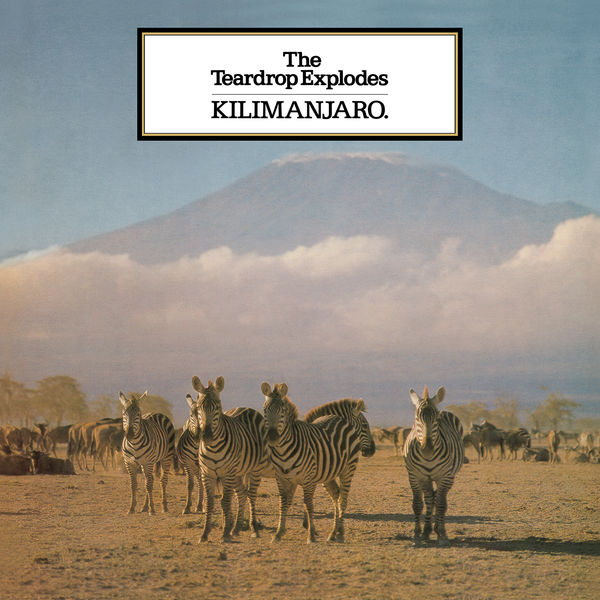 The Teardrop Explodes: Kilimanjaro