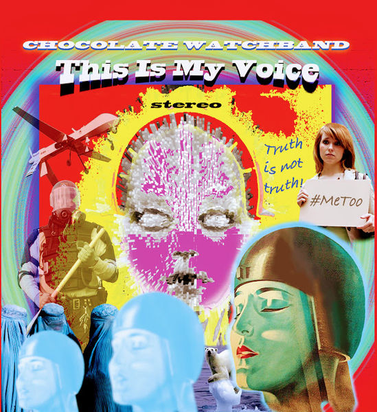 The Chocolate Watchband: This Is My Voice