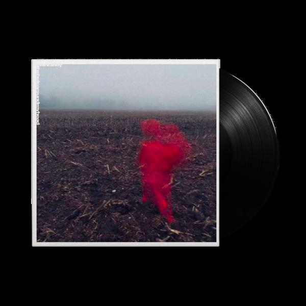Will Varley: The Hole Around My Head: Black Vinyl LP