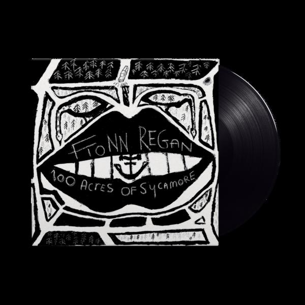 Fionn Regan: 100 Acres Of Sycamore: Vinyl Edition