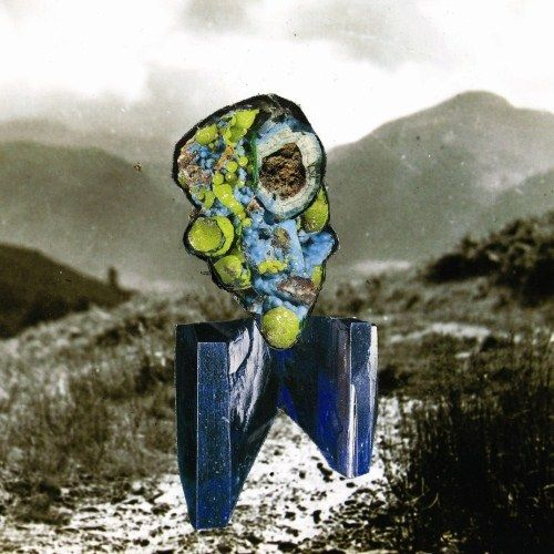 Richard Dawson: The Glass Trunk