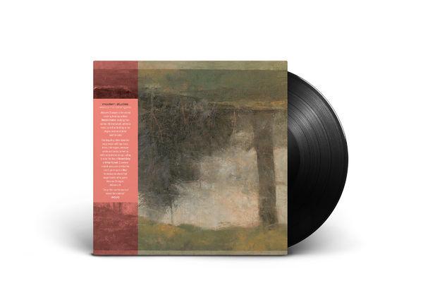 Modern Studies: Welcome Strangers - Vinyl LP