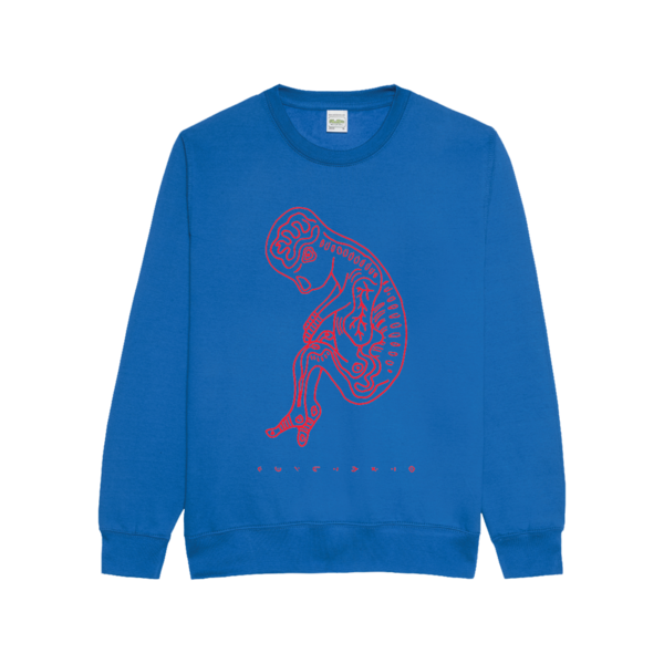aurora: STEP 1 Blue Sweatshirt