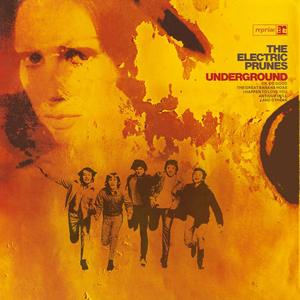 The Electric Prunes: THE ELECTRIC PRUNES