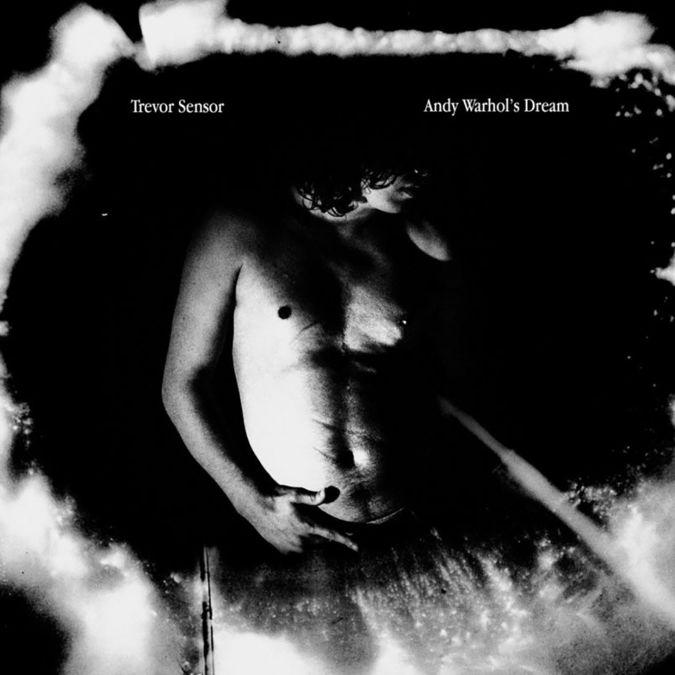 Trevor Sensor: Andy Warhol's Dream