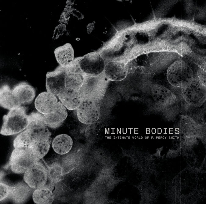 Tindersticks: Minute Bodies: The Intimate World Of F. Percy Smith