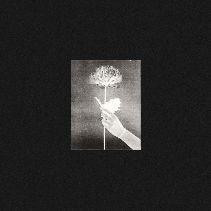 White Flowers: Day By Day: Signed CD