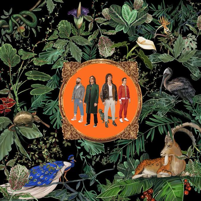 Don Broco: Amazing Things: CD