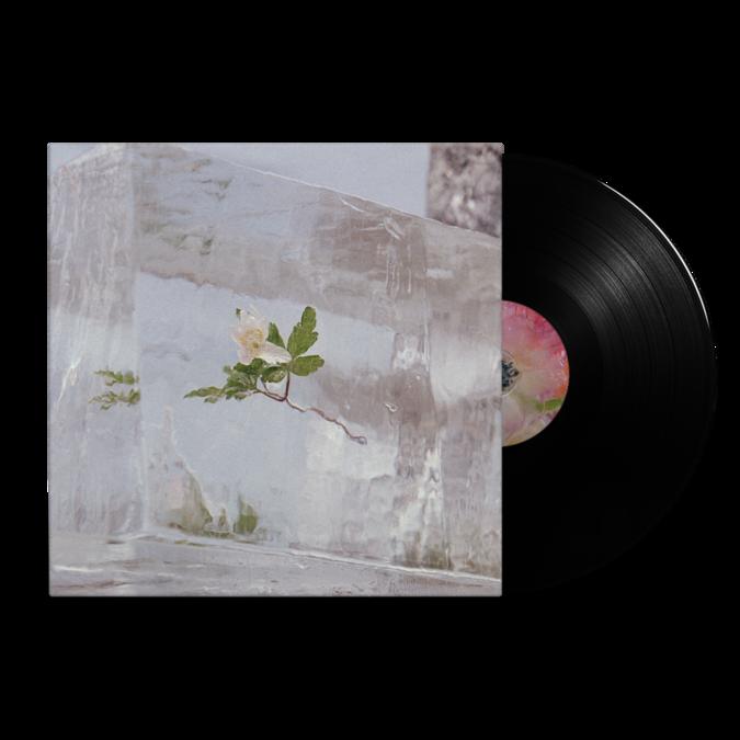 Efterklang: Windflowers: Black Vinyl LP