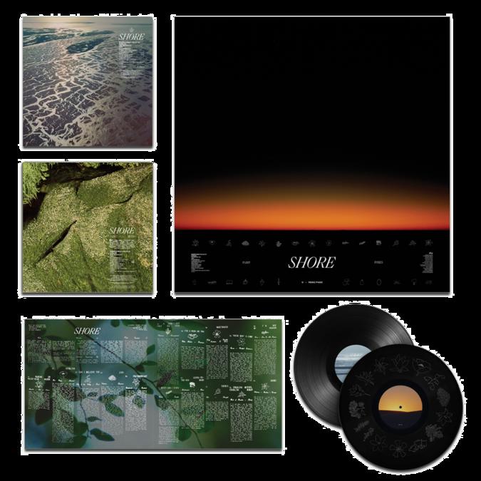 Fleet Foxes: Shore: Etched 180gm Vinyl 2LP + 24x24