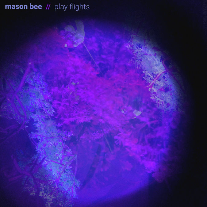 Mason Bee: Play Flights: Black Vinyl LP